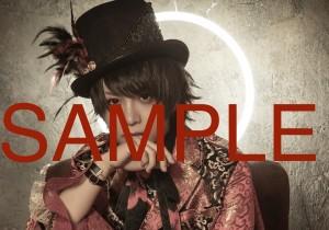 _AAA4913_S1 SAMPLE