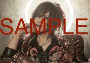 _AAA5321_S1 sam_